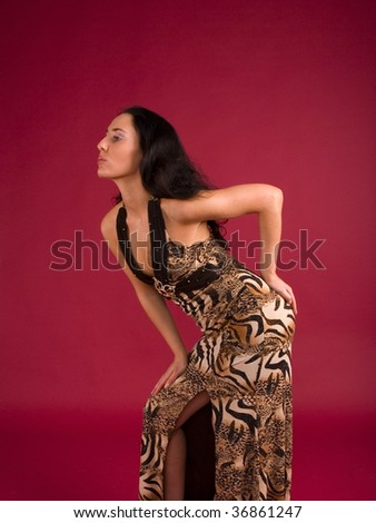 Elegance attractive woman dressed in beautiful clothes - stock photo