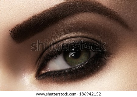 Elegance close-up of female eye with classic dark brown smoky make-up. Macro shot of woman's face part. Beauty, cosmetics and makeup.