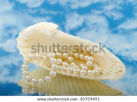 Elegant pearls over in shell with sky and reflection very shallow depth of field - stock photo