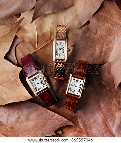 elegant watches in plan with autumn leaves in background - stock photo