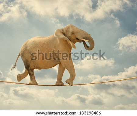 Elephant In Sky Walking On Rope - stock photo