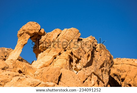 Elephant rock formation at the Valley of Fire state park near Las Vegas, Nevada - stock photo