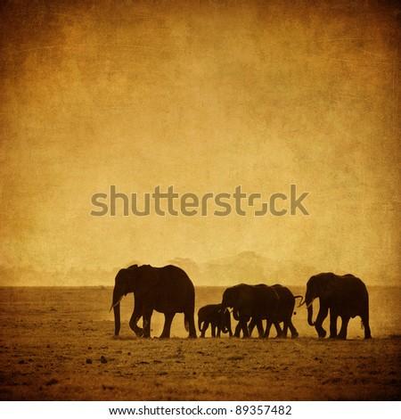 elephant's family, amboseli, kenya - stock photo