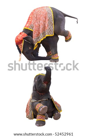 elephant show in chiang mai night safari - stock photo