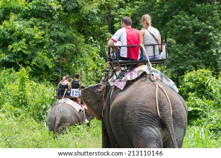 Elephant trekking through jungle in northern Thailand - stock photo