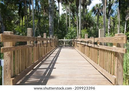 Elevated wooden walkway bridge over swamps in heavy wooded area - stock photo