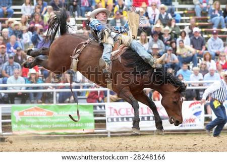 Elizabeth, CO - June 08:  A PRCA Bareback cowboy makes a successful ride during the Elizabeth Stampede Rodeo on June 08, 2008.  The event is considered one of the best small rodeos in the country. - stock photo