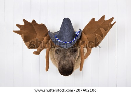 Elk head with antlers and a white felt bavarian hat with blue white ribbon hanging on a white wall. - stock photo