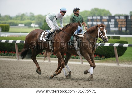 ELMONT - JUNE 6: Hangingbyathread with Eibar Coa aboard in the post parade for the Fifth race at Belmont Park on Belmont Stakes Day - June 6, 2009 in Elmont, NY. - stock photo