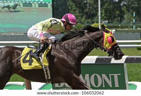 "ELMONT, NY - JUN 23: Ramon Dominguez and ""Flat Bold"" win The Patrick Cunningham Memorial allowance race at Belmont Park on Jun 23, 2012 in Elmont, NY."