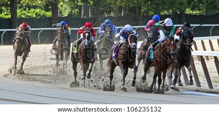 ELMONT, NY - JUN 23: The field takes the far turn in a maiden race at Belmont Park on June 23 2012 in Elmont, NY. Eventual winner is Bailey Park and Cornelio Velasquez (2nd from right). - stock photo