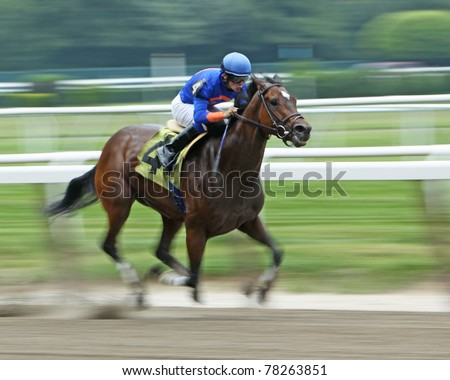 ELMONT, NY - MAY 29: Jockey David Cohen pilots filly Jacky Juice to victory in a claiming race at Belmont Park on May 29, 2011 in Elmont, NY. - stock photo