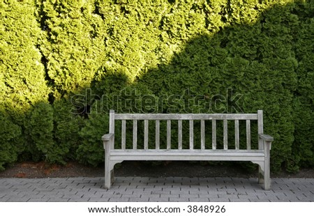 empty aged wooden bench in front of a green hedge.  a strong line cuts diagonally across the green hedge - stock photo