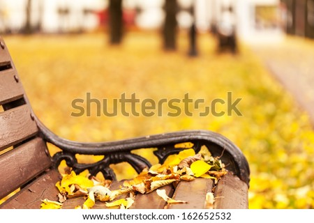 Empty bench in park - stock photo