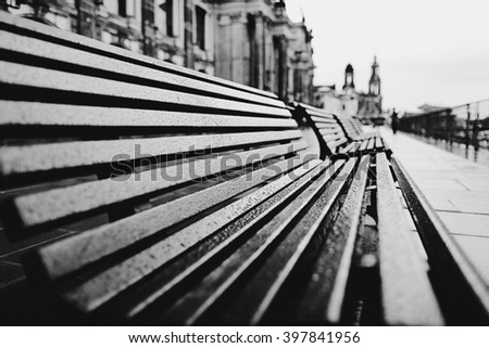 Empty benches in a rainy summer day, Dresden, Germany