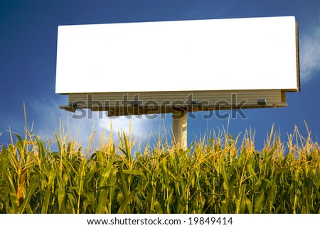 Empty billboard in a field of corn for you to advertise your message - stock photo