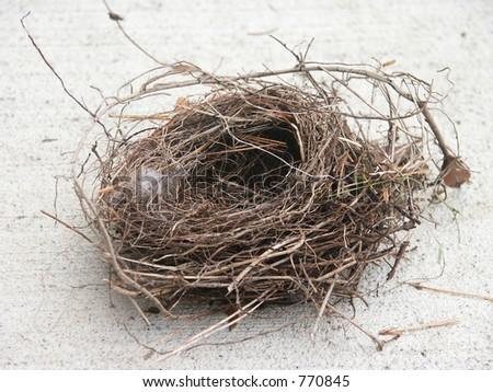 Empty bird nest. - stock photo