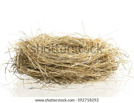 Empty birds nest isolated on white background