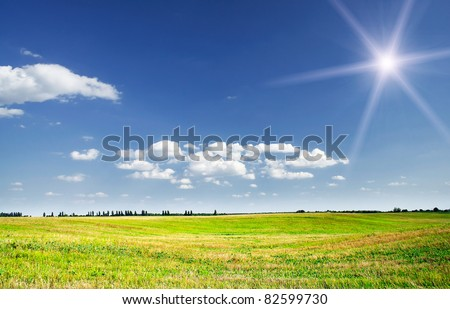 Empty  bristly field after crop - stock photo