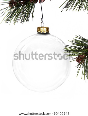Empty Christmas ornament hanging in a Christmas tree - stock photo
