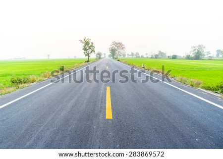 Empty country road through the agricultural fields in the morning