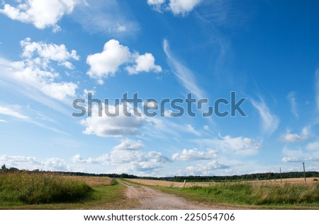 Empty countryside road through the wheat field - stock photo