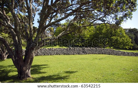 Empty farm paddock bordered by old stone wall with native New Zealand Pohutukawa tree in foreground. - stock photo