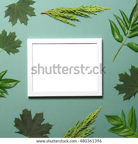 Empty frame with green leaves on green  background - Flat lay mock up