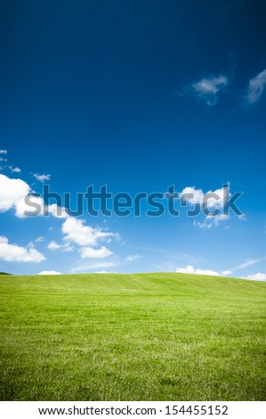 Empty green grass field and the blue sky with white clouds - stock photo