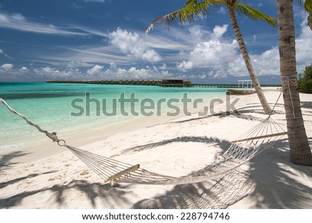 Empty hammock between palm trees on tropical beach in Maldives - stock photo