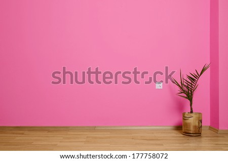 empty interior with wooden floor, plant and pink wall