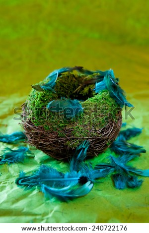 Empty nest with turquoise feathers on a green background - stock photo