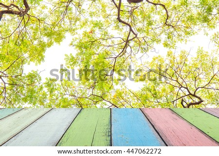 Empty painted wooden table or plank with Big tree branch and green leaf in forest or public park for product display. - stock photo