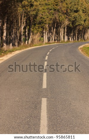 Empty road against trees ending in a curve - stock photo
