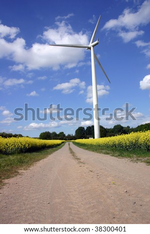 Empty road near a rapeseed field and wind engine - stock photo