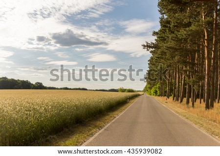 empty street, country road in rural landscape