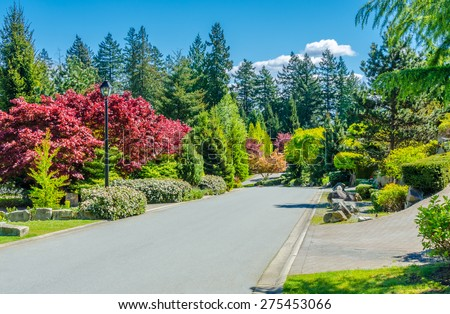 Empty street in the suburbs of Vancouver, Canada. Nice and comfortable great neighborhood. - stock photo