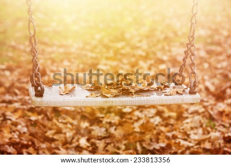Empty swing with leaves in the autumn season - stock photo