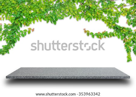 Empty top of natural stone shelves and green ivy on wall background. For product display - stock photo