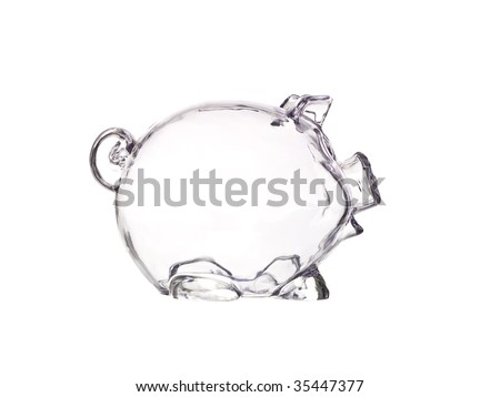 Empty transparent Pig Bank