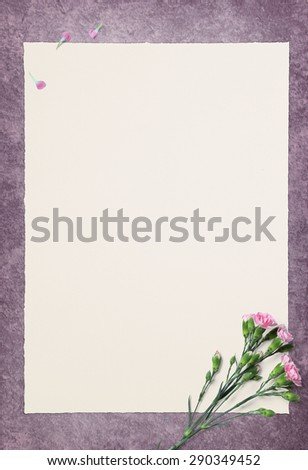 Empty White paper and Pink Carnation On violet floor - stock photo