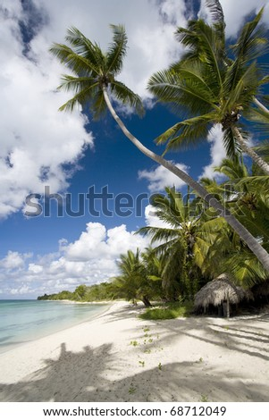 Empty white sand beach, ocean and palm trees.
