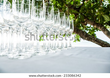 empty wine glass   - stock photo