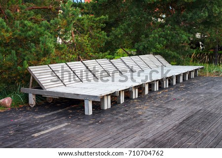 Empty wooden beach beds, arranged in a row, with pine branches on a background