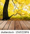 empty wooden deck table in the park. Ready for product montage display.  - stock photo