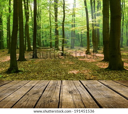 Empty wooden deck table with forest in background - stock photo