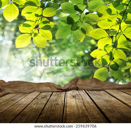 Empty wooden deck table with spring background. Ready for product display montage. - stock photo