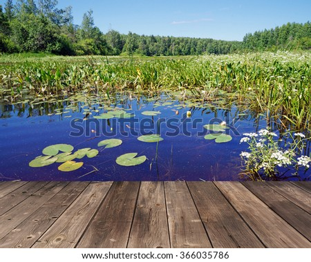Empty wooden flooring against a summer landscape with water-lilies in a stream. - stock photo