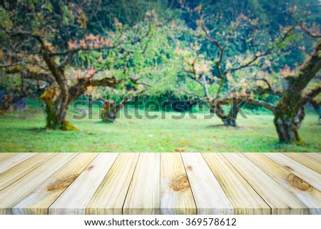 Empty  wooden table or shelf wall on garden background,  For display of your products. - stock photo