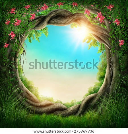 Enchanted dark forest at the spring - stock photo